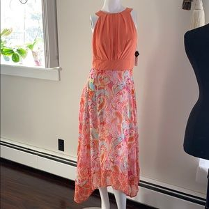 Sandra Darren dress- new with tags -size 6.